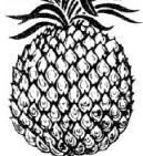 Symbol Pineapple